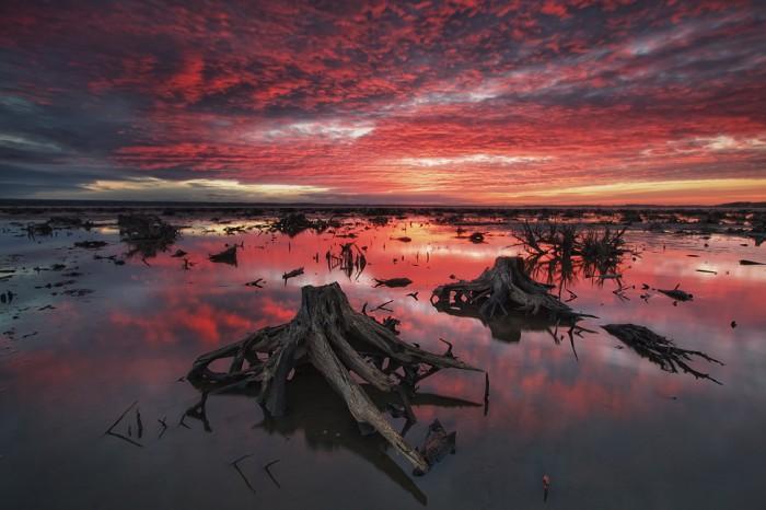 dead-lake